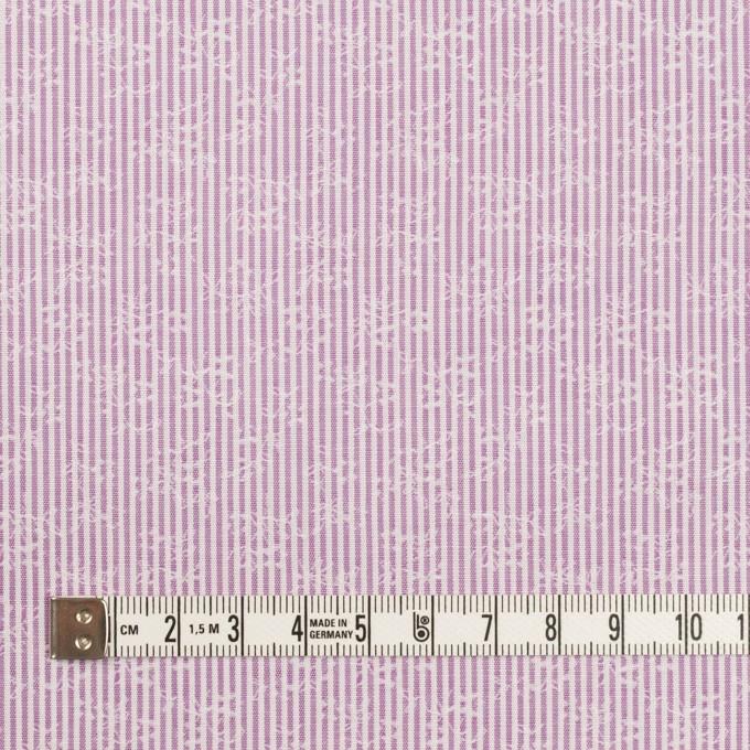 コットン×ストライプ(ラベンダー)×ブロードジャガード_全2色 イメージ4