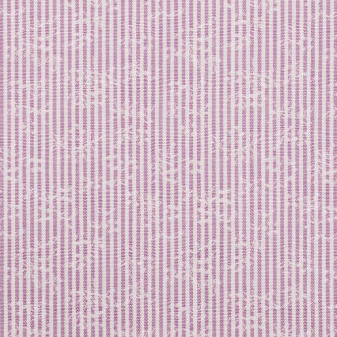 コットン×ストライプ(ラベンダー)×ブロードジャガード_全2色 イメージ1