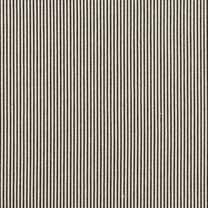 コットン&シルク混×ストライプ(アイボリー&ブラック)×コードレーン・ストレッチ イメージ1