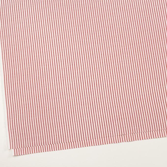 コットン×ストライプ(レッド)×斜子織 イメージ2