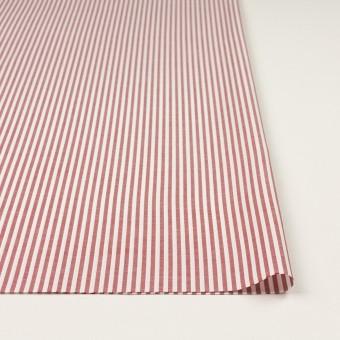 コットン×ストライプ(レッド)×斜子織 サムネイル3