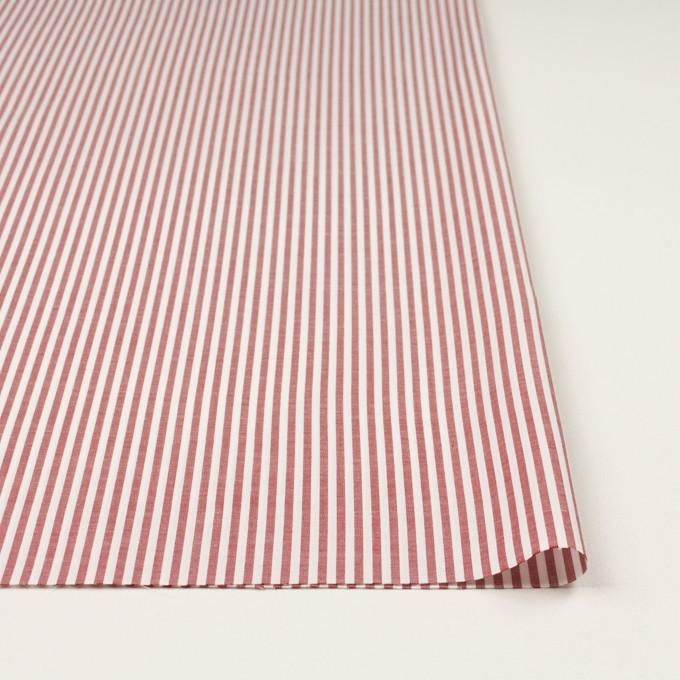 コットン×ストライプ(レッド)×斜子織 イメージ3