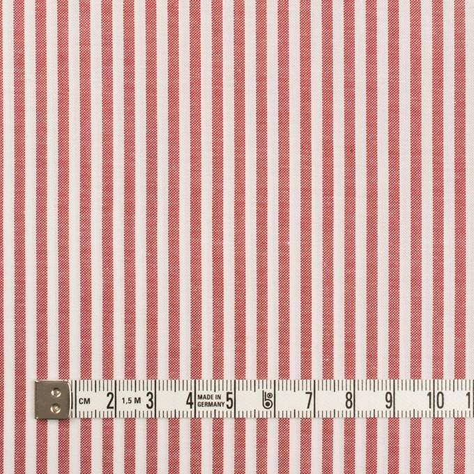 コットン×ストライプ(レッド)×斜子織 イメージ4