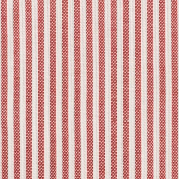 コットン×ストライプ(レッド)×斜子織 イメージ1