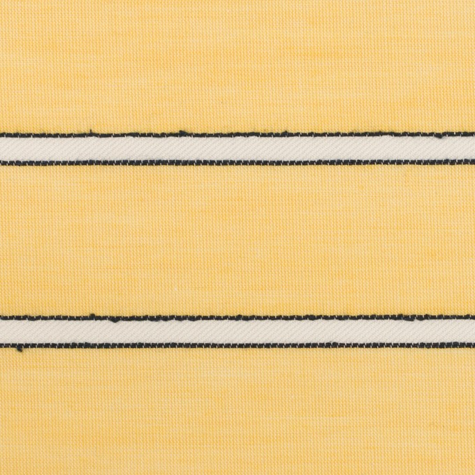 コットン&レーヨン×ボーダー(シトロン)×ボイルドビー イメージ1