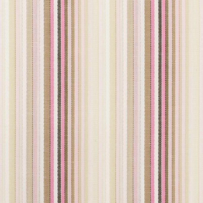 コットン×ストライプ(ピンク&カーキベージュ)×ブロードジャガード イメージ1