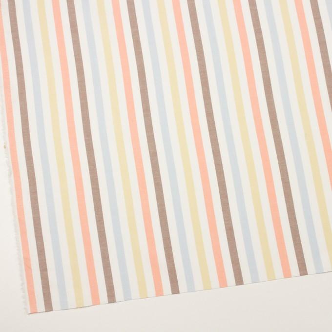 コットン×ストライプ(サワー、シトロン&オレンジ)×オックスフォード イメージ2