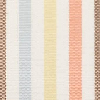 コットン×ストライプ(サワー、シトロン&オレンジ)×オックスフォード サムネイル1