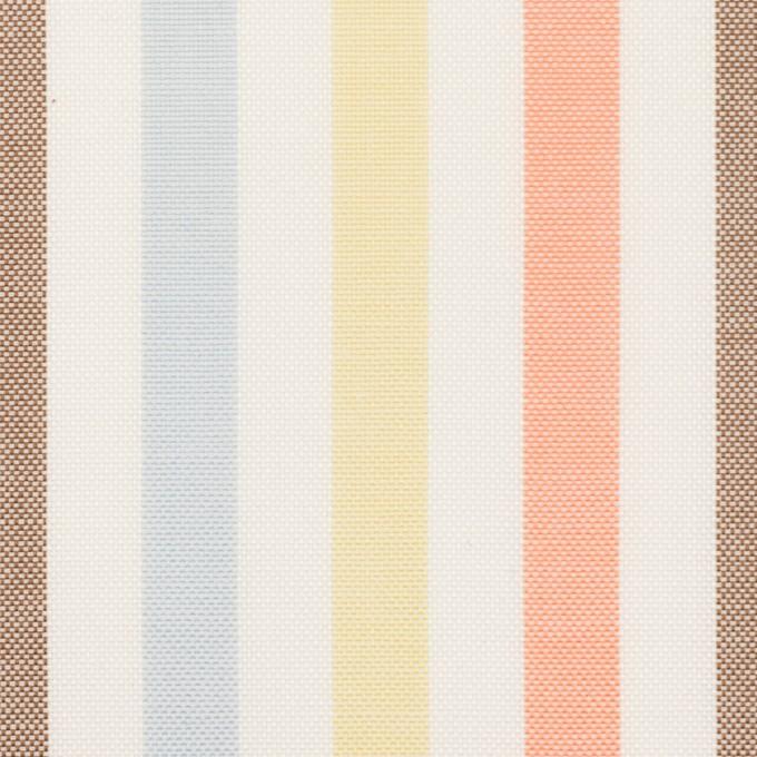 コットン×ストライプ(サワー、シトロン&オレンジ)×オックスフォード イメージ1
