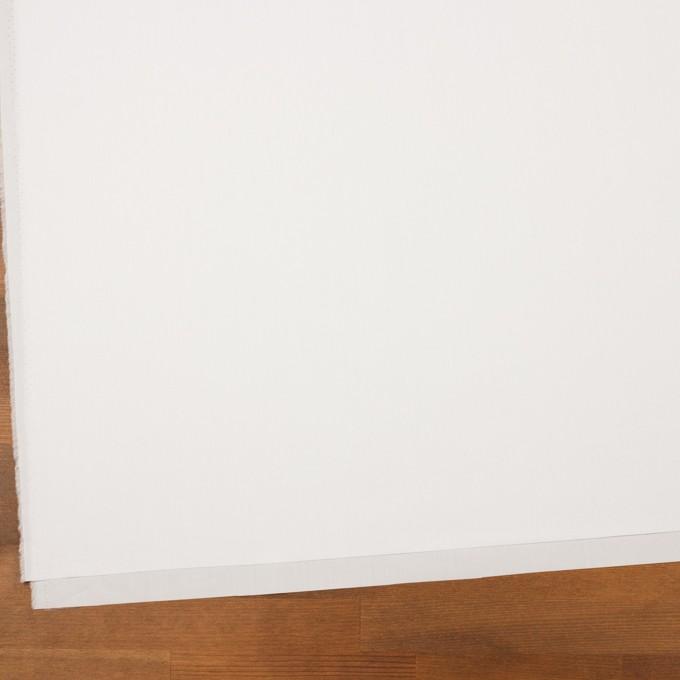コットン×無地(ホワイト)×ブロード_イタリア製 イメージ2
