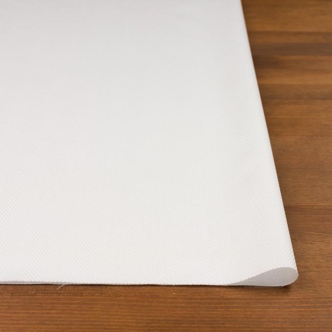コットン×無地(オフホワイト)×ヘリンボーン イメージ3