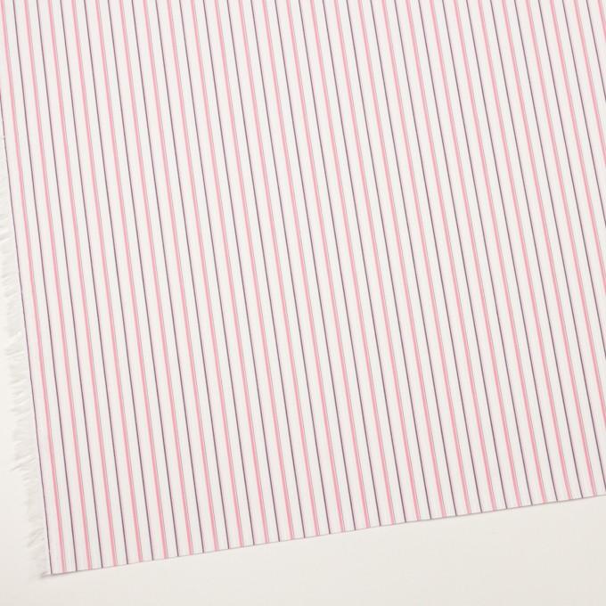 コットン×ストライプ(ピンク)×ブロードジャガード_全2色 イメージ2