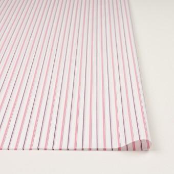 コットン×ストライプ(ピンク)×ブロードジャガード_全2色 サムネイル3