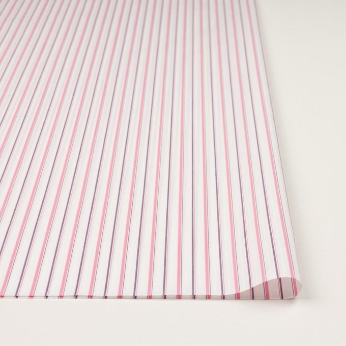 コットン×ストライプ(ピンク)×ブロードジャガード_全2色 イメージ3