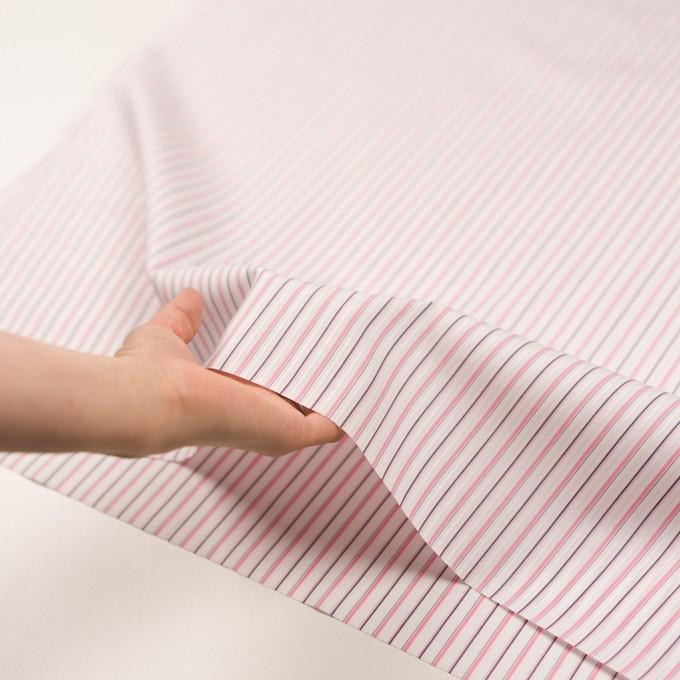 コットン×ストライプ(ピンク)×ブロードジャガード_全2色 イメージ5