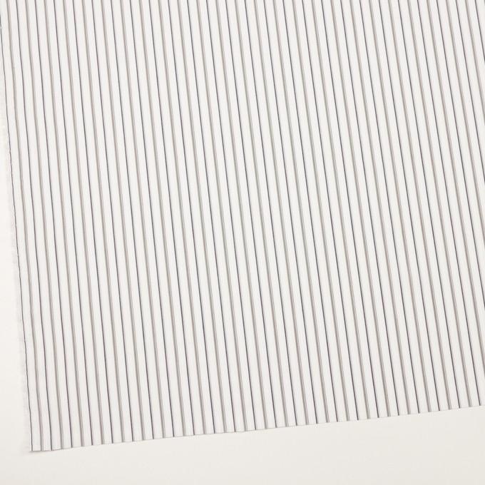コットン×ストライプ(グレー)×ブロードジャガード_全2色 イメージ2