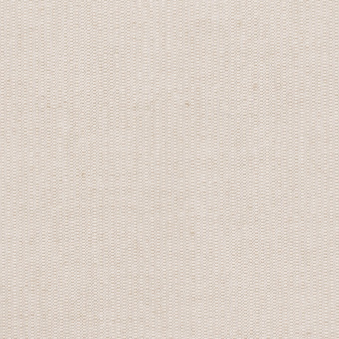 コットン×無地(ミルクティー)×コード織_全2色 イメージ1