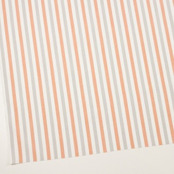 コットン×ストライプ(グレー&オレンジ)×ブロード サムネイル2