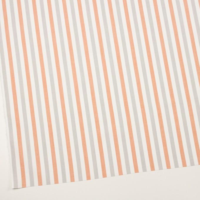 コットン×ストライプ(グレー&オレンジ)×ブロード イメージ2