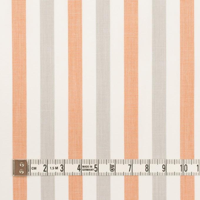 コットン×ストライプ(グレー&オレンジ)×ブロード イメージ4