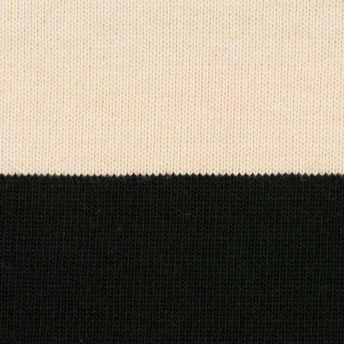 コットン×ボーダー(ブラック&エクリュ)×天竺ニット イメージ1