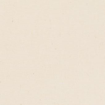 コットン×無地(キナリ)×10号帆布 サムネイル1