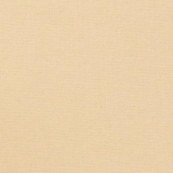 コットン×無地(ライトベージュ)×9号帆布 サムネイル1