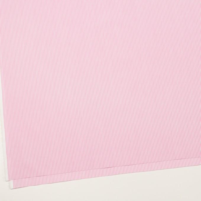 コットン×ストライプ(ピンク)×ブロード イメージ2