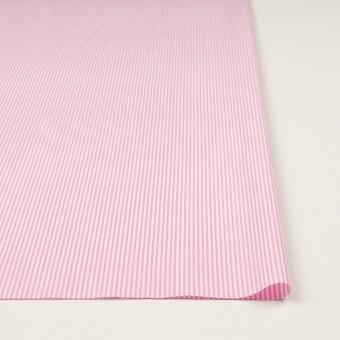コットン×ストライプ(ピンク)×ブロード サムネイル3