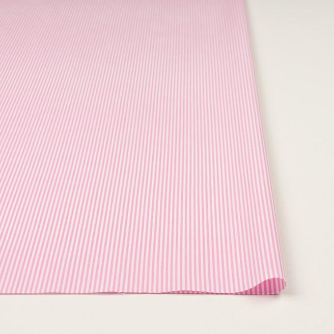 コットン×ストライプ(ピンク)×ブロード イメージ3