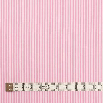 コットン×ストライプ(ピンク)×ブロード サムネイル4