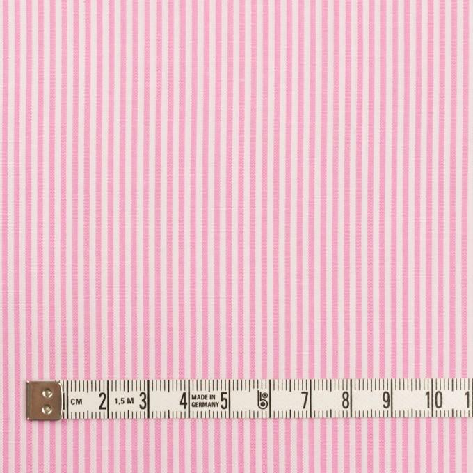 コットン×ストライプ(ピンク)×ブロード イメージ4