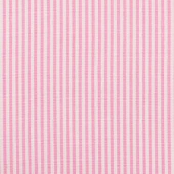 コットン×ストライプ(ピンク)×ブロード