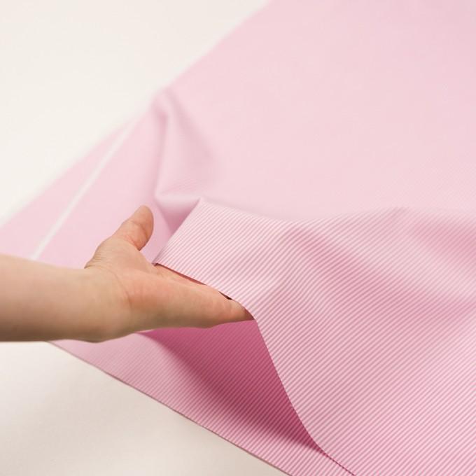 コットン×ストライプ(ピンク)×ブロード イメージ5