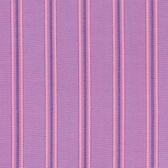 コットン×ストライプ(モーブ)×ブロード サムネイル1