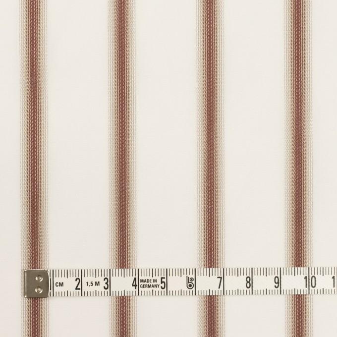 コットン×ストライプ(レンガ&カーキベージュ)×ブロードジャガード イメージ4