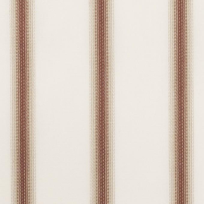 コットン×ストライプ(レンガ&カーキベージュ)×ブロードジャガード イメージ1