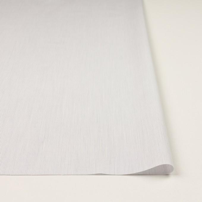 コットン×ストライプ(ネイビー)×ブロード イメージ3