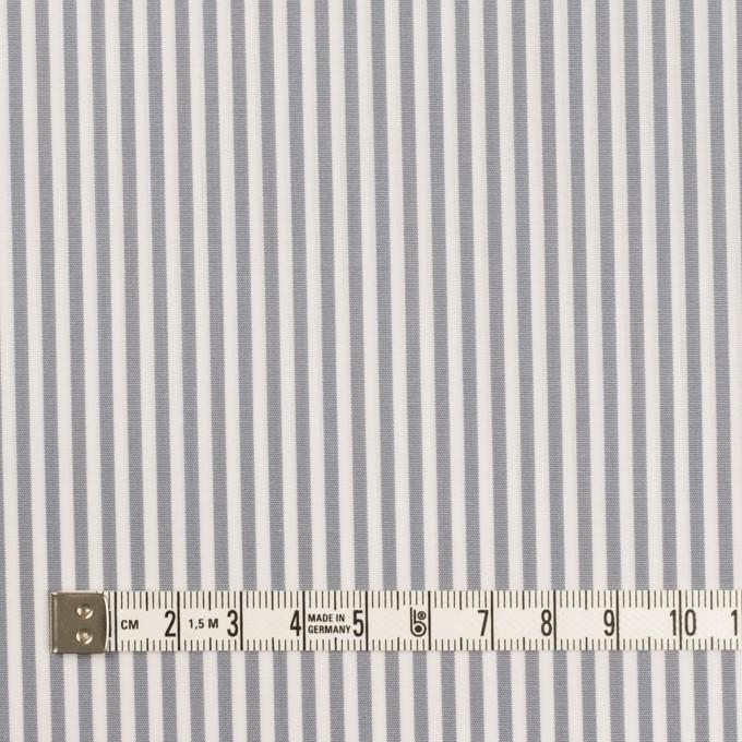 コットン×ストライプ(ストーングレー)×ブロード イメージ4