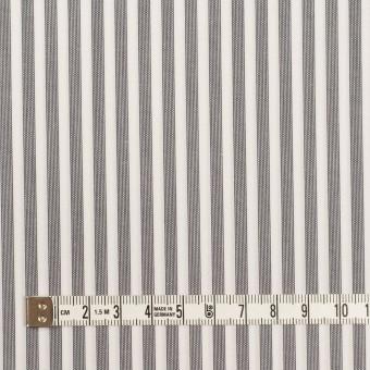 コットン×ストライプ(チャコールグレー)×ブロード サムネイル4