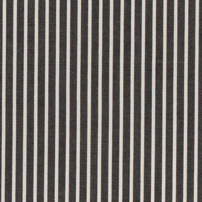 コットン×ストライプ(チャコール)×ブロード_イタリア製 イメージ1