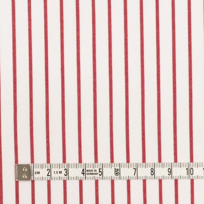 コットン×ストライプ(レッド)×高密ポプリン イメージ4