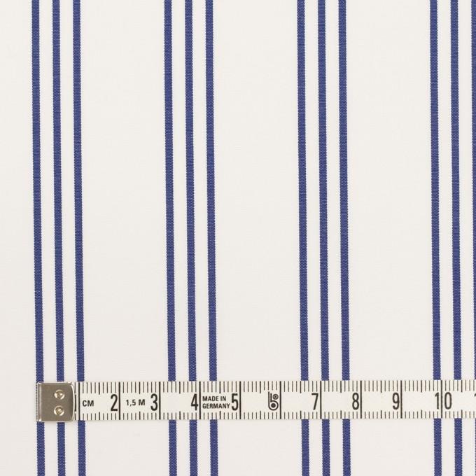 コットン×ストライプ(ブルー)×ブロード イメージ4
