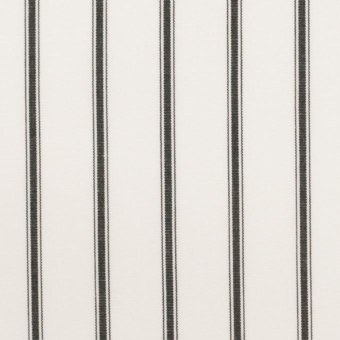 コットン×ストライプ(チャコール)×ブロード イメージ1