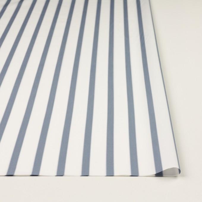 コットン×ストライプ(ブルーグレー)×ブロード イメージ3