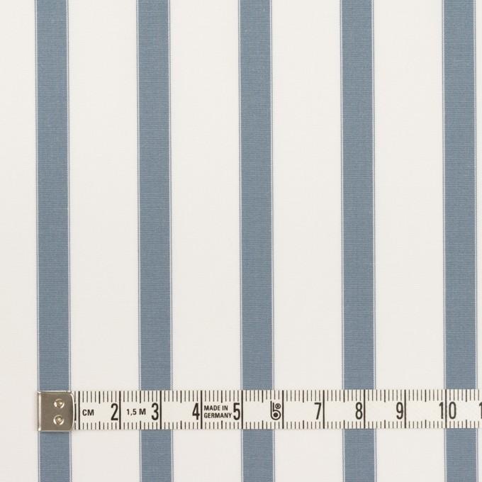 コットン×ストライプ(ブルーグレー)×ブロード イメージ4