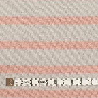 コットン×ボーダー(グレー&ウインターローズ)×天竺ニット_全2色 サムネイル4