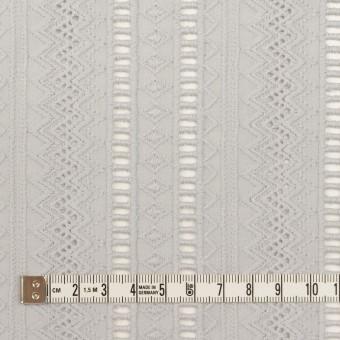コットン×ストライプ(ストーングレー)×ローン刺繍 サムネイル4