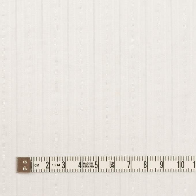コットン&ナイロン×ストライプ(オフホワイト)×サッカージャガード イメージ4