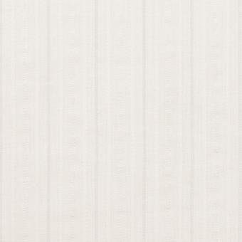 コットン&ナイロン×ストライプ(オフホワイト)×サッカージャガード サムネイル1